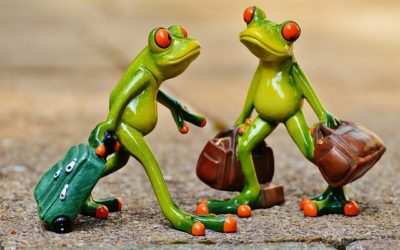 How and when did frogs start to hop?